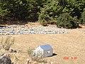 Arı kovanları - panoramio.jpg
