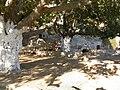 Argia Spring Filoti Naxos Greece DSCN1248.jpg