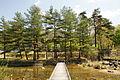 Asago Art Village13n4272.jpg
