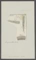 Ascaris pulmonaris - - Print - Iconographia Zoologica - Special Collections University of Amsterdam - UBAINV0274 104 03 0017.tif
