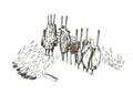 Assando carnes no espeto.pdf