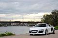 Audi R8 - Flickr - Alexandre Prévot (134).jpg