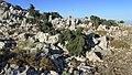 Auf dem Berg von Archangelos - panoramio.jpg