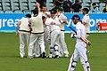 Australia v England (2nd Test, Adelaide Oval, 2013-14) (11287586915).jpg