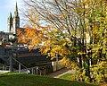 Autumn Trees, Omagh - geograph.org.uk - 1019150.jpg