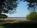 Bad Zwischenahn Zwischenahner Meer.jpg
