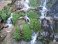 Bakthang waterfalls35.jpg