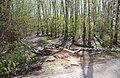 Balashikha, Moscow Oblast, Russia - panoramio (60).jpg