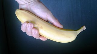 https://upload.wikimedia.org/wikipedia/commons/thumb/f/fa/Banana_in_hand.jpg/320px-Banana_in_hand.jpg?uselang=ja