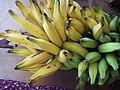 Banane plantain de la RCA.jpg