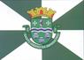 Bandeira Santo Amaro da Imperatriz Santa Catarina Brasil.png