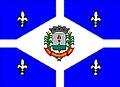 Bandeira de Aparecida.jpg