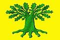 Bandeira de Carballo.jpg