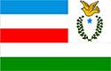 Bandeira de Juruti