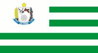 Bandeira santa carmem.png