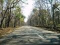Bandipur Tiger Reserve - panoramio (17).jpg