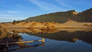 Oregon Dunes National Recreation Area - Image: Banshee Hill Dune