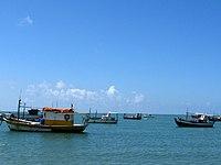 Barcos-PraiaDoForte.jpg