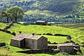 Barns at Winterings - geograph.org.uk - 891152.jpg