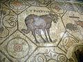 Basilica di aquilieia, museo e scavi , mosaici aula teodoriana 16.JPG