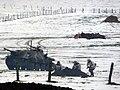 Bastogne (7).jpg