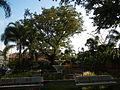 Bauan,Batangasjf9512 04.JPG