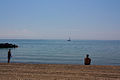 Beach on the Toronto Islands.jpg