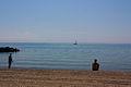 Beach on the Toronto Islands.jpg