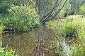 Bebru dīķis, Mālpils pagasts, Mālpils novads, Latvia - panoramio.jpg
