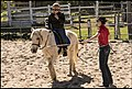 Benjamin at Riding School-1 (42226130274).jpg
