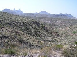 Big Bend National Park PB112561.jpg