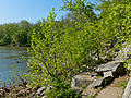Billy Goat B Trail 6.jpg