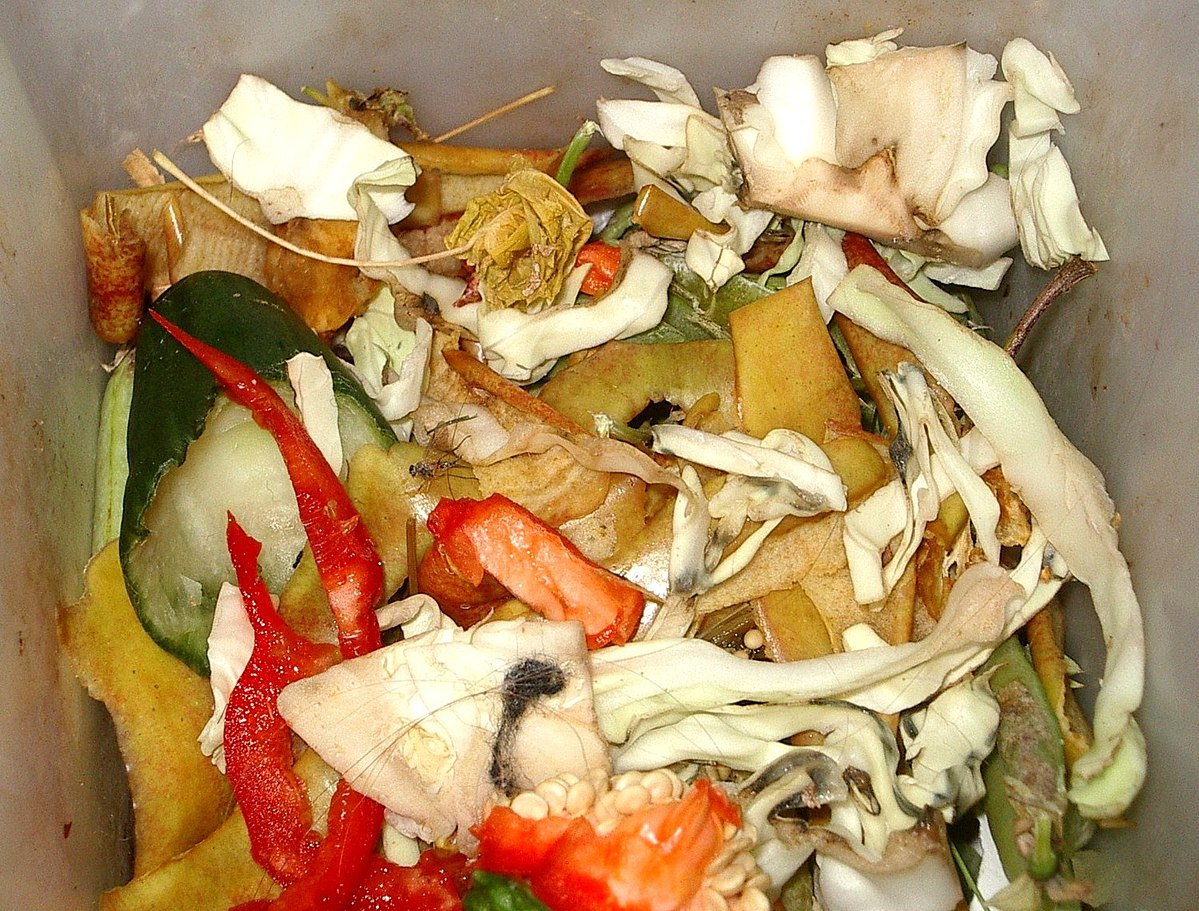 Food waste wikipedia for Waste material products