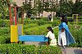 Bird in a Cage - Science Park - Science City - Kolkata 2010-02-18 4572.JPG