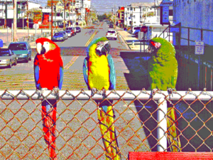 Enhanced Graphics Adapter - Simulated image as displayed using EGA 640×350×16, corrected for aspect ratio
