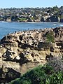 Birds on the rocks - panoramio.jpg