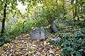 Biryulyovskiy Arboretum 04.jpg
