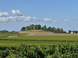 Blaignan castle hill.JPG
