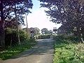 Blaxhall Hall Crossing in Hoo Lane - geograph.org.uk - 256331.jpg
