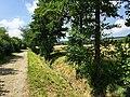Blick auf Feldweg Richtung Neuhof - panoramio (1).jpg