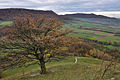 Blick vom Gipfel der Limburg nach Westen zum Breitenstein und zum Teckberg.jpg