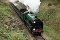 Bluebell Railway - Giants of Steam (22869428215).jpg