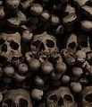 Bone Pile, Sedlec Ossuary (6283364666).jpg