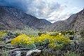 Borrego Canyon (13496630914).jpg