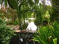 Botanic Garden SA.JPG