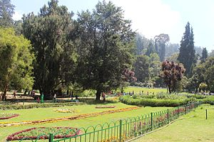 Government Botanical Gardens, Ooty - Botanical Garden View in Ooty, Tamil Nadu.