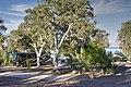 Boulder Beach Campground (690de661-6b5e-498b-a77c-0c0cb251e6e2).jpg