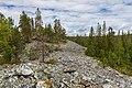 Boulder field on the side of Kivitunturi, Savukoski, Lapland, Finland, 2021 June - 2.jpg