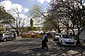 Bowral NSW 2576, Australia - panoramio (31).jpg
