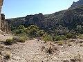 Boyce Thompson Arboretum, Superior, Arizona - panoramio (9).jpg